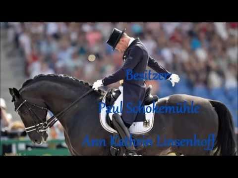 TOTILAS - das Wunderpferd