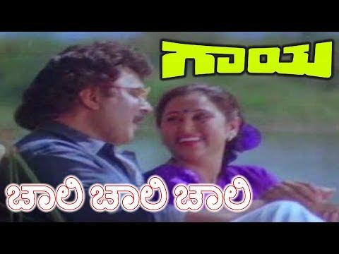Gaaya Kannada Movie | Chali Chali Chali Song | Ramkumar, Apoorva, Sharath Babu, Geetha