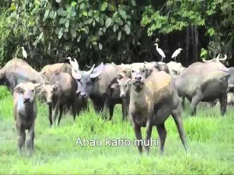 Benjamin Matanjang - Mogium Kalabau