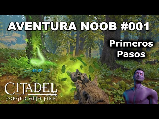 AVENTURA NOOB #001 - Primeros Pasos | Citadel Forged With Fire
