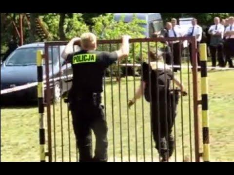 W jaki sposób sprawdzić, czy zdasz test sprawności do policji? from YouTube · Duration:  2 minutes 16 seconds