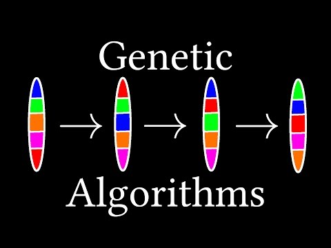 How algorithms evolve (Genetic Algorithms)