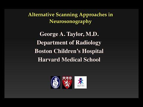 Master Class in Pediatric Neurosonography- Alternative Scanning Techniques thumbnail
