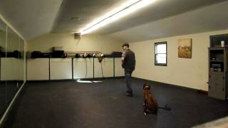 Dog Training (olympia Kennels - Chester N.h.) Cole Part Ll