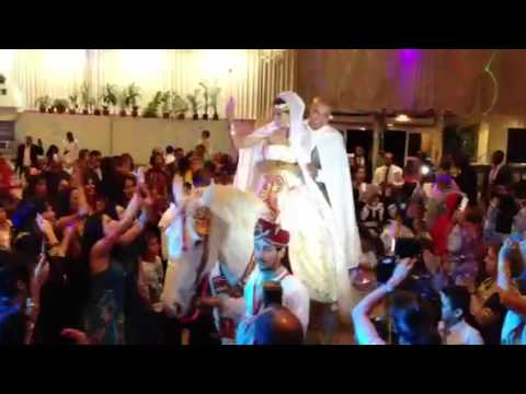 location cheval mariage 06 99 72 44 49 - Location De Chameau Pour Mariage