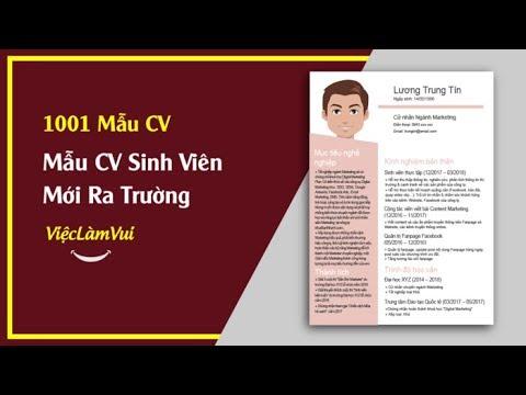 Mẫu CV Cho Sinh Viên Mới Ra Trường – 1001 Mẫu CV ViecLamVui