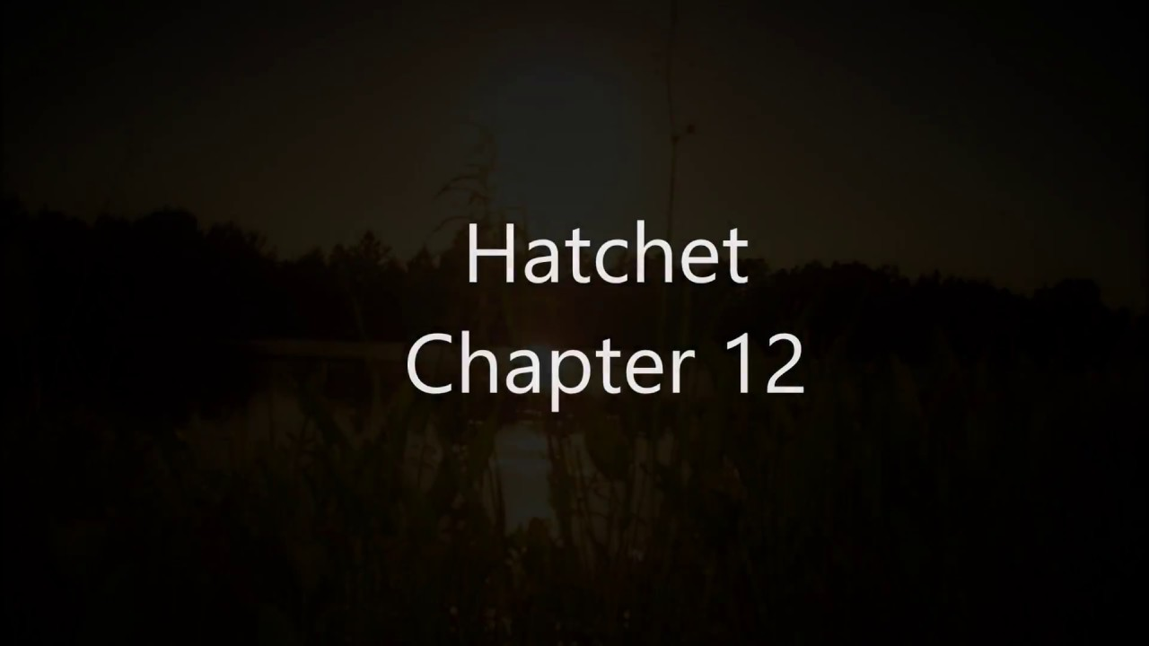 hatchet audiobook chapter 12