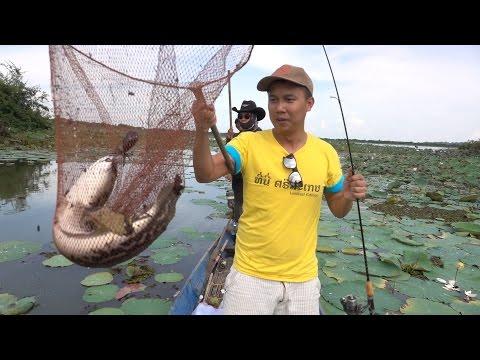 สารคดีตกปลาชะโดเขื่อนราษีไศล
