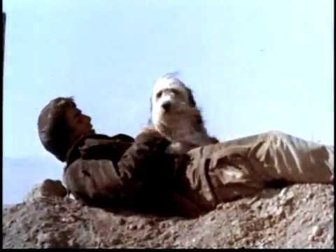 A Boy and his Dog (1975) (Trailer) - Don Johnson - YouTube