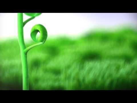 Organic Depot Intro