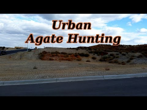 Urban Rockhounding: Tri-Cities Agate Hunting
