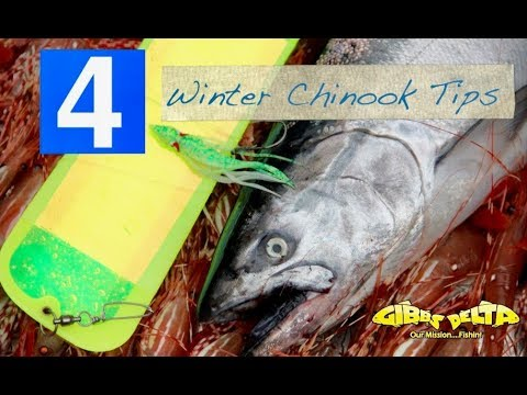 How To Fish Tutorial -  Fishing For Winter Chinook Salmon