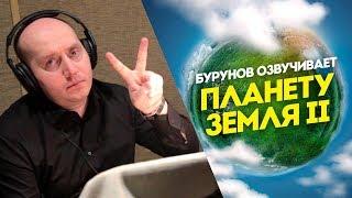 Сергей Бурунов озвучивает документальный фильм «Планета Земля II»
