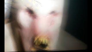 Leaked Video Of Strange Alien Creature 2018