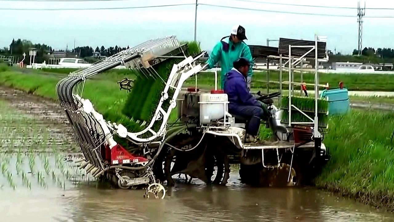 Video Inovasi Teknologi Pertanian Modern Youtube