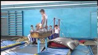 Спортивная гимнастика. Конь-махи.Gymnastics. Pommel horse