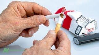 Stane se z konopného lobby nové tabákové lobby?