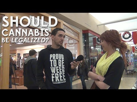 Asking Minnesota: Should Cannabis Be Legalized?
