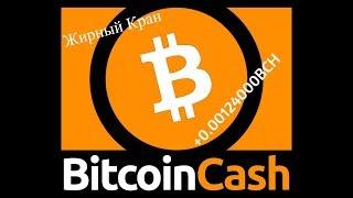 ✅ЖИРНЫЙ КРАН(Bitcoin Cash)На телефоне БЕЗ ВЛОЖЕНИЙ