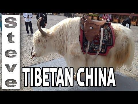 A GLIMPSE AT SHANGRI-LA - Tibetan China 🇨🇳