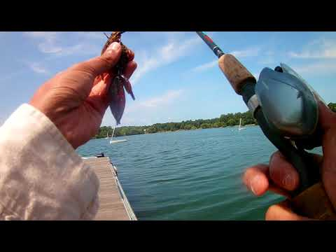 Clear Water Bass Fishing At Jamaica Pond, MA