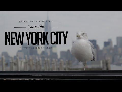 En sportfiskare personliga guide till New York - An anglers guide to NYC - NYTTFISKE 2015