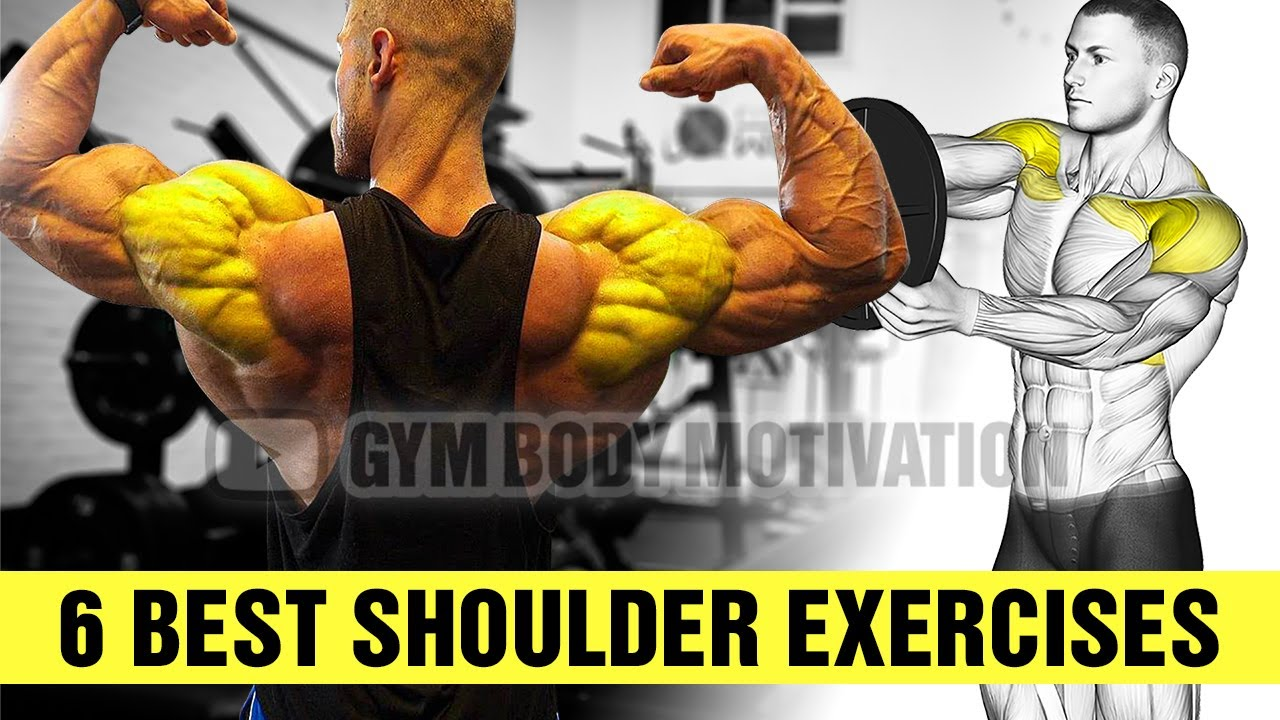How To Build Your Shoulder Fast (6 Effective Exercises)