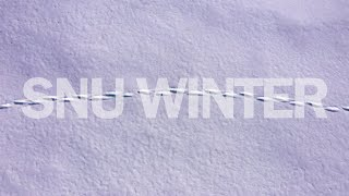 [4K] 소복이 내려앉은 겨울, 서울대학교 관악캠퍼스 screenshot 4