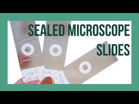 Sealed Microscope Slides - DIY Semi-Permanent Microscope Slides!