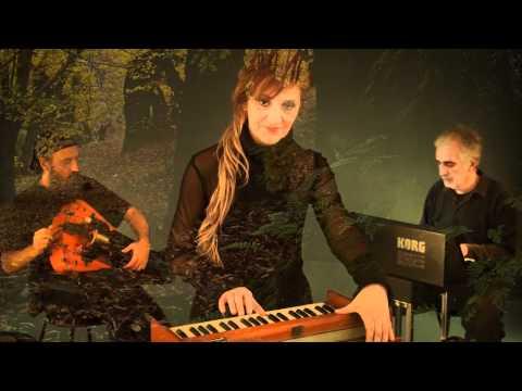 DOA videoclip