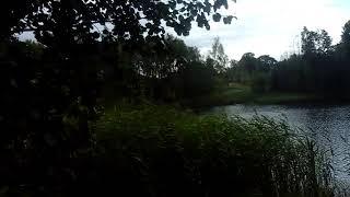 Рыбалка на озере полонка