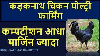 कड़कनाथ चिकन पोल्ट्री फार्मिंग बिजनेस कैसे शुरू करें   Kadaknath Chicken Business In Hindi