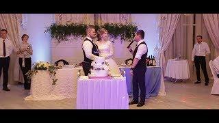 Свадебный стиль: Ведущий Дмитрий Кушеверский