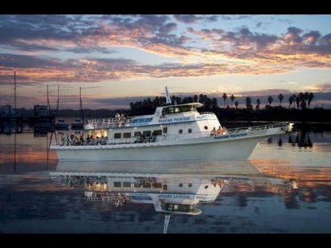 Dolphin View Restaurant Cruise New Smyrna Beach Fl