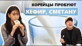 КОРЕЙЦЫ ПРОБУЮТ КЕФИР, СМЕТАНУ, РЯЖЕНКУ / 러시아 유제품 먹어보기!