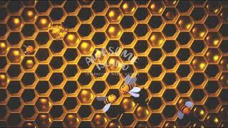 DigitalFloor HoneyComb