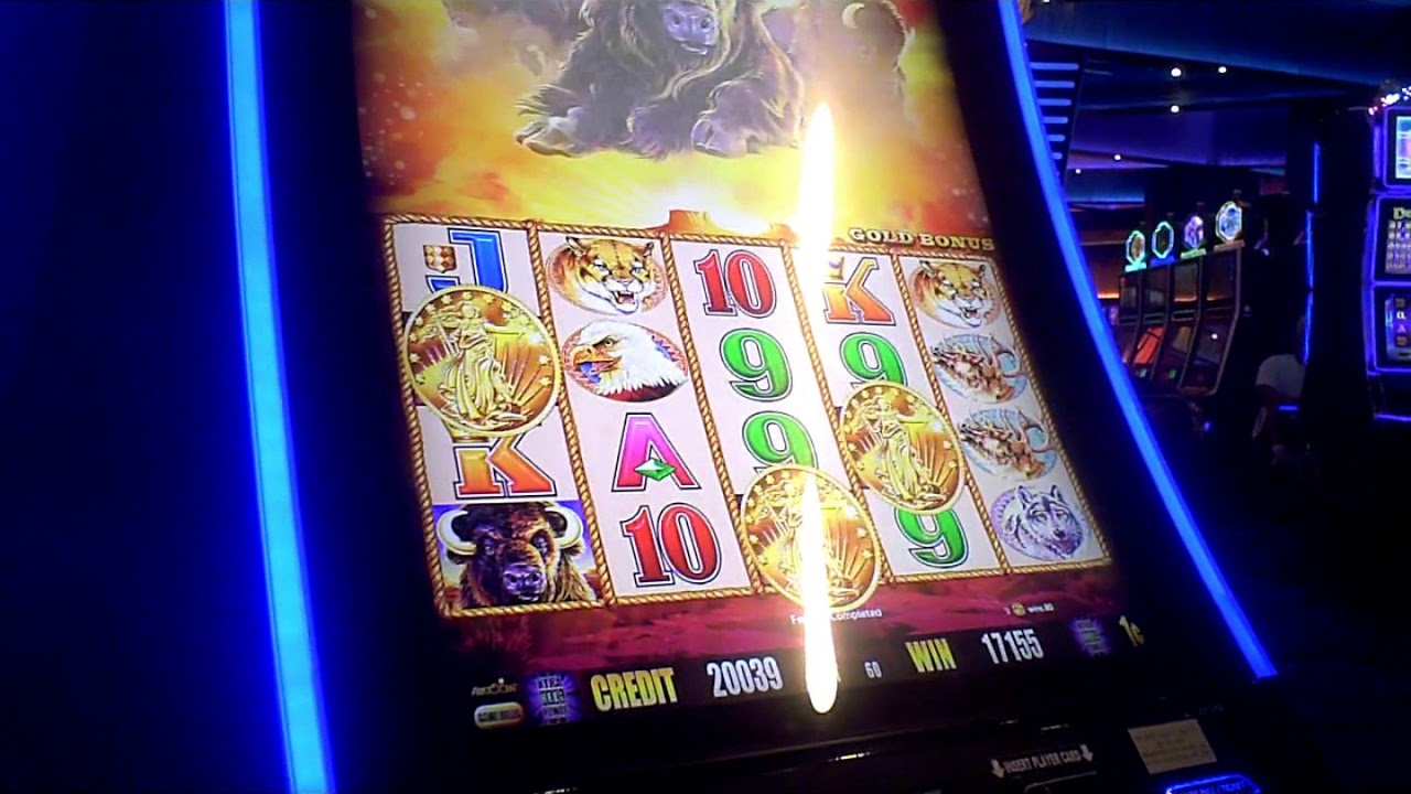 Buffalo slot machine bonus win