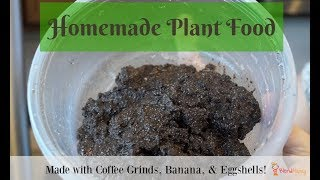 Homemade Plant Food in a Vitam…