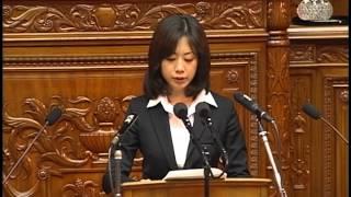 平成22年3月25日 本会議 衆議院議員 田中美絵子 田中美絵子 検索動画 5
