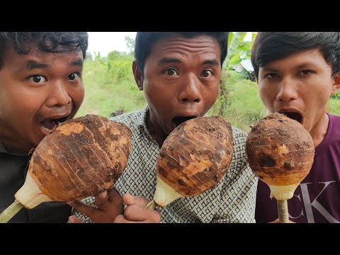 How to Make Taro Tuber Dessert Recipe in Village - Delicious Dessert with Lifestyle Cooking Foods