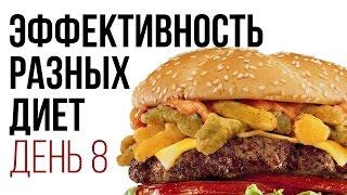 День № 8. Какие бывают диеты (6 лепестков, белковая диета, Energy Diet и пр.). Главное правило диет