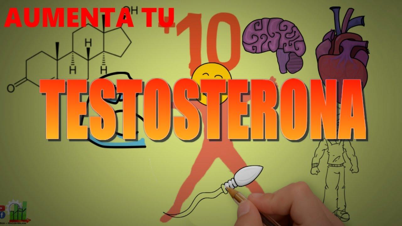 como volver en si testosterona rapidamente