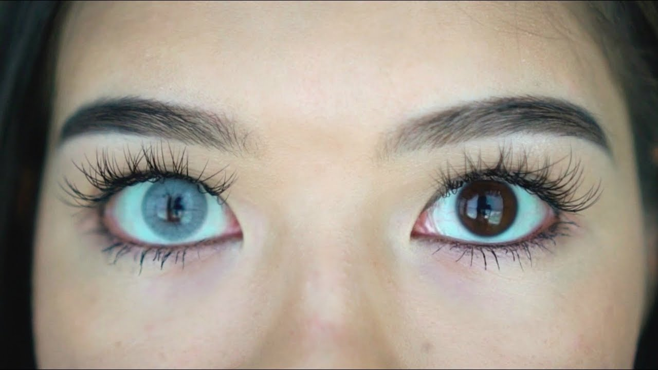 b9e452121ab Colored Contacts for BROWN DARK EYES Review⎜Opulent Lenses - YouTube