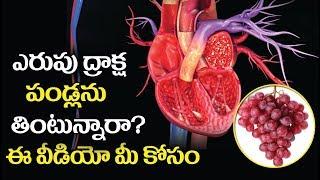 ఎరుపు ద్రాక్ష పండ్లు తింటున్నారా?|Health Benefits Of Red Color Grapes-Telugu Health Tips-Aarogyasura