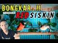 Kupas Tuntas Cara Ternak Dan Perawatan Burung Red Siskin Eko Slow Rock Semarang  Mp3 - Mp4 Download