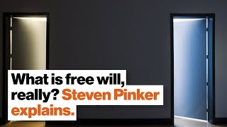 What is free will, really? Steven Pinker explains.