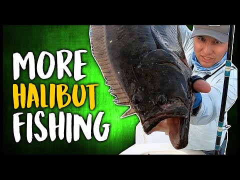 San Diego Halibut Fishing With Brothers Sport Fishing - San Diego Fishing Charters