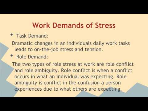Organizational Behavior: Stress and Well-Being at Work