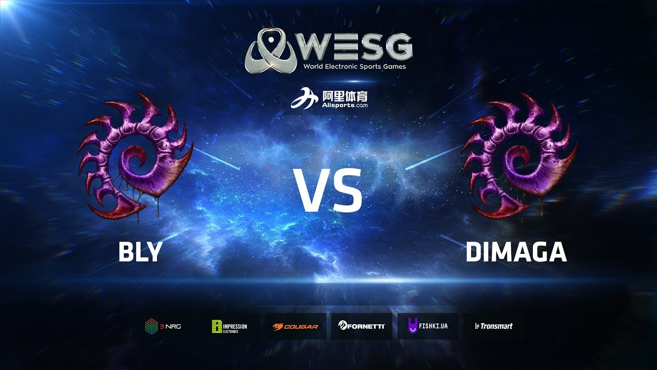 WESG Ukraine - Winners Round 2 Match 2: Bly (Z) vs DIMAGA (Z)