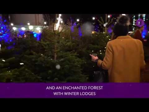 Winterland Fulham | DesignMyNight